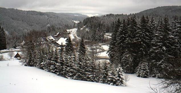 paysage-de-foret-noire-1.jpg